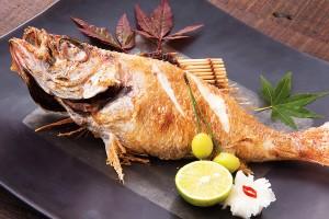 「のどぐろ姿塩焼き」(1,350円税別)さざえ・牡蠣などが育つ日本海の豊かな海水で丁寧に造ったまろやかな塩が素材の旨みを引き立てる